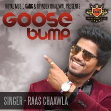 Goose Bump