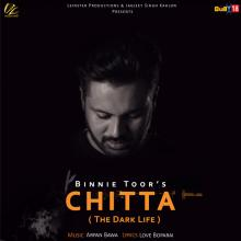 Chitta - The Dark Li...
