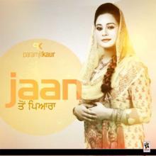 Jaan Ton Pyara