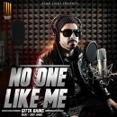 No One Like Me